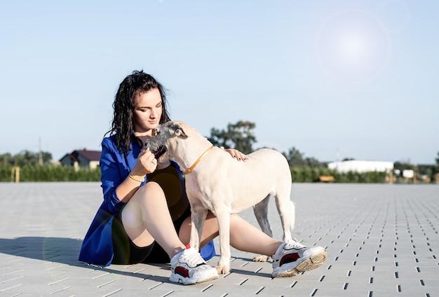 Opieki nad zwierzętami. adopcja zwierzaka. młoda kobieta bawi się z psem w parku
