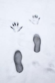 Opierając dłonie i stopy