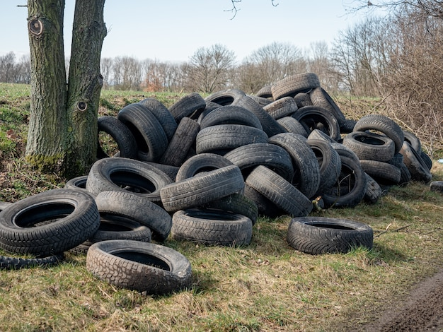 Opony samochodowe nielegalnie opuszczają murawę obok pola pszenicy na śląsku