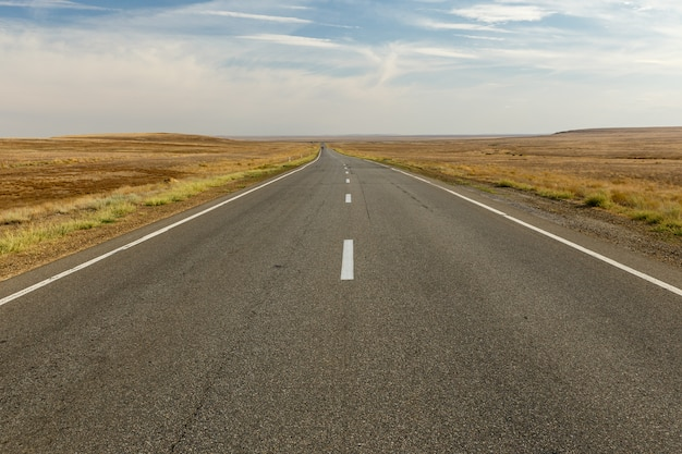 Opróżnia asfaltową drogę przez step, kazachstan, piękna droga