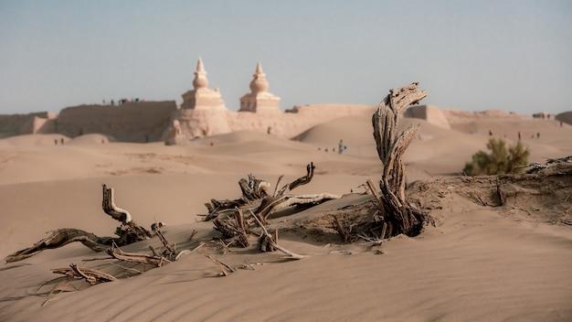 Opuszczone ruiny czarnego miasta martwe drzewo w mongolii alexa ejin banner