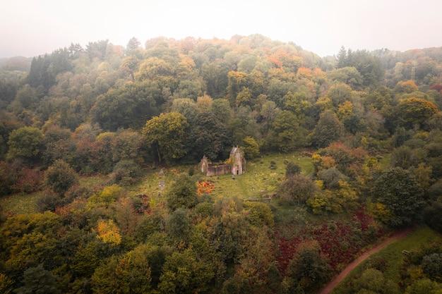 Opuszczony dom w lesie