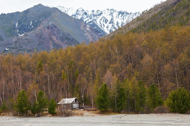 Opuszczony drewniany dom w lesie w pobliżu gór