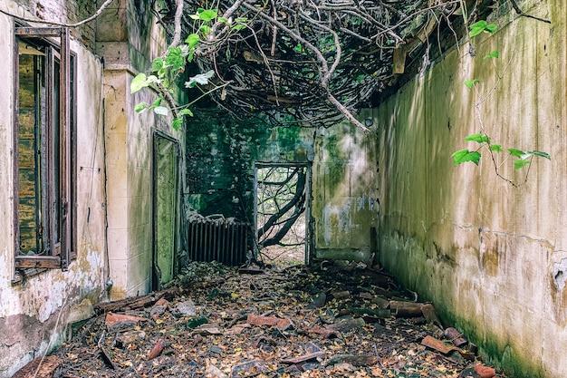 Opuszczony szpital w poveglii