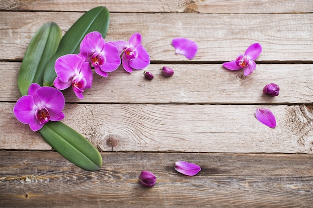 Orchidee na starym drewnianym tle