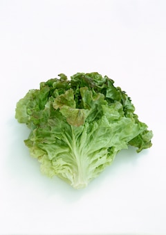 Organiczna świeża kapusta vegitable w wodzie