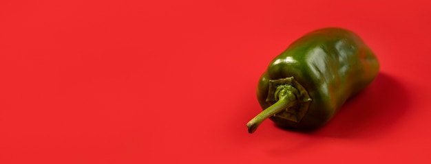 Organicznie zielony chili z kopii przestrzenią