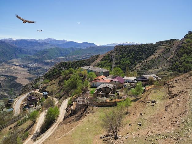 Orły przelatują nad górską wioską. górska wioska gunib położona na płaskowyżu górskim w górach kaukazu. alpejska wioska gunib. republika dagestanu, rosja