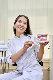 Ortodonta trzyma sztuczną szczękę dentystyczną w swoim miejscu pracy.