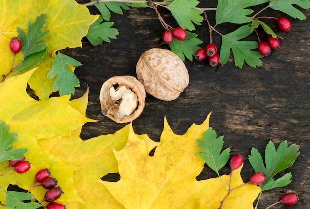 Orzechy włoskie i żółte liście. makro. orzech i czerwone jagody. drewniane tło