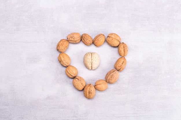 Orzechy włoskie uwielbiają zdrowe jedzenie dla mózgu. kształt ludzkiego mózgu otoczony jest ziarnami orzecha w kształcie serca