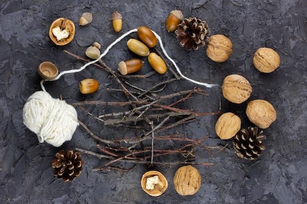 Orzechy włoskie, żołędzie na pięknym tle, koncepcja zima. zimowa mucha