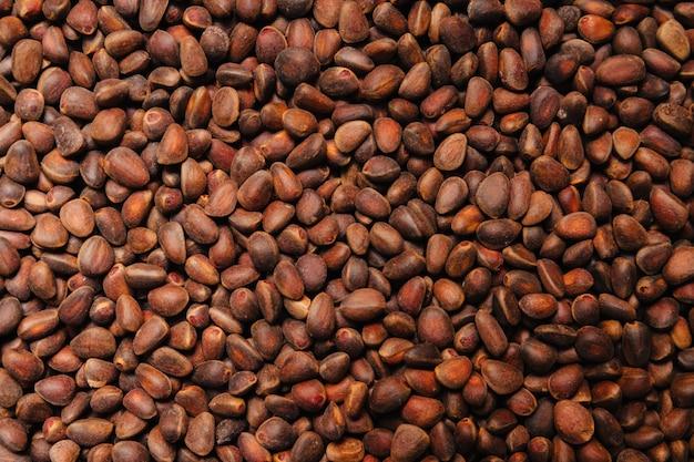 Orzeszki piniowe teksturowane tło