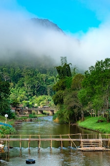 Orzeźwiający poranek nad rzeką w małej wiosce dom nad wodą za pokrytą mgłą górą dystrykt bo kluea, prowincja nan, tajlandia