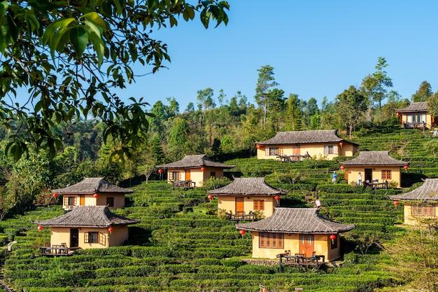 Osada w polu ryżowym
