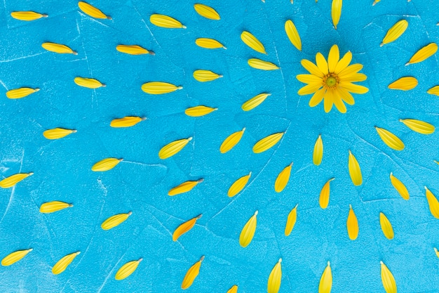 Oset ostryg hiszpański z kwiatowym otoczeniem