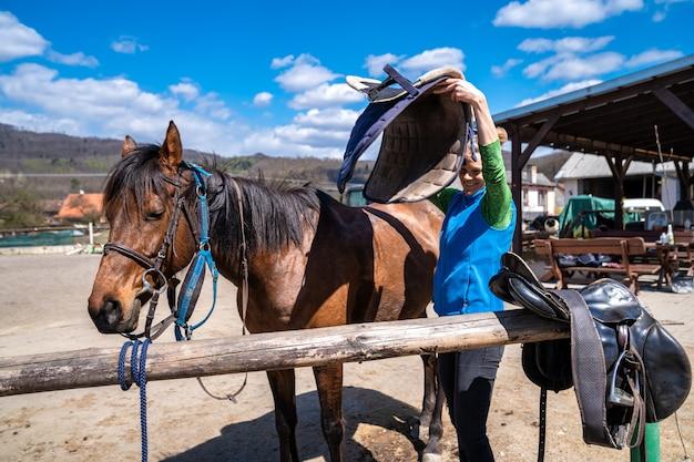 Osiodłane konie na farmie przed jazdą
