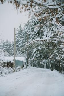 Ośnieżona rosyjska wioska w pobliżu lasu