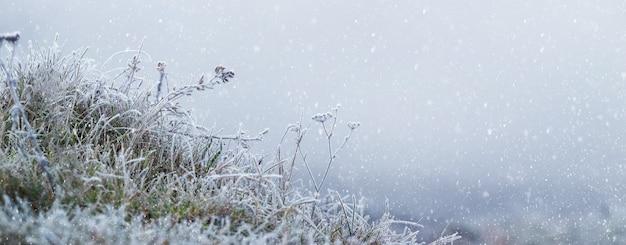 Ośnieżona trawa i zwiędłe rośliny na rozmytym tle podczas opadów śniegu. boże narodzenie i nowy rok tło z miejsca na kopię