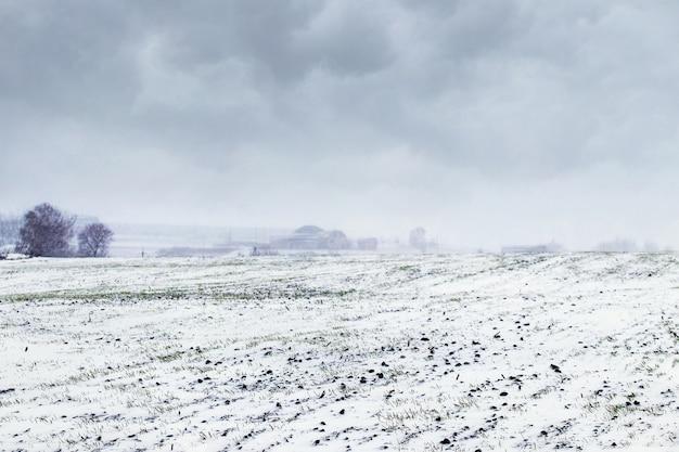 Ośnieżone zimowe pole i pochmurne niebo nad polem