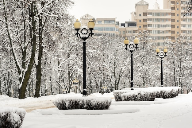 Ośnieżony park w centrum mińska na białorusi