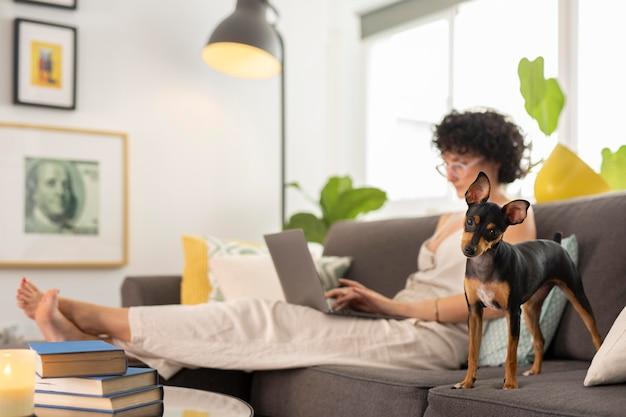 Osoba pracująca w domu z psem