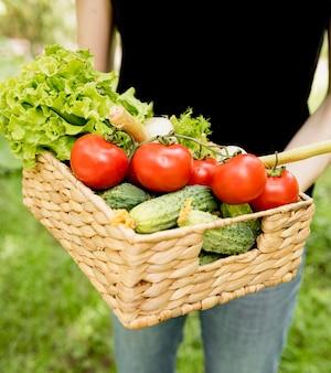 Osoba trzymająca wiadro z pomidorami i ogórkami