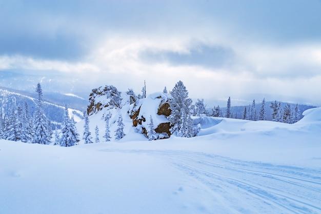 Ośrodek narciarski sheregesh w rosji położony w górach shoriya zimowy krajobraz drzew w śniegu