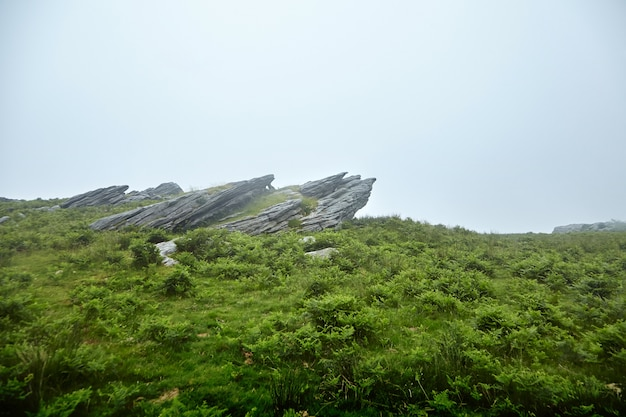 Ostre kamienie na zielonym wzgórzu we mgle