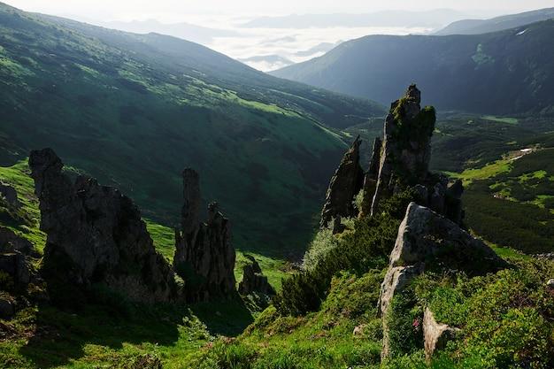 Ostre małe skały. majestatyczne karpaty. piękny krajobraz. widok zapierający dech w piersiach.