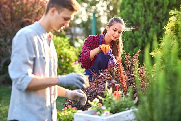 Ostrożny ogrodnik w ogrodowych rękawiczkach stawia doniczki z sadzonkami w białym drewnianym pudełku na stole, a dziewczyna przycina rośliny w cudownym ogrodzie przedszkolnym w słoneczny dzień. .