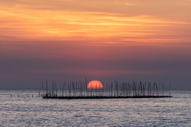 Ostrygi gospodarstwo rolne w morzu i pięknym niebo zmierzchu tle