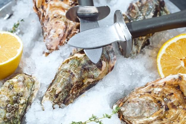 Ostrygi na kamiennym talerzu z lodem i cytryną.
