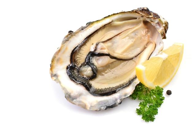 Ostrygi z cytryną na białym tle zbliżenie