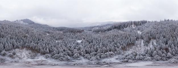 Oszałamiająca panorama narciarska białych śnieżnych klifów z drzewami pokrytymi gęstą mgłą w mroźny zimowy poranek. pojęcie surowego klimatu północnego i relaksu w kraju europejskim