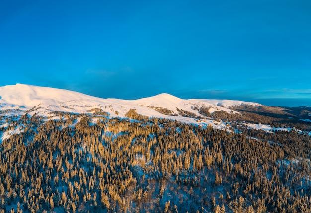 Oszałamiająca zimowa panorama z drzewami i wzgórzami