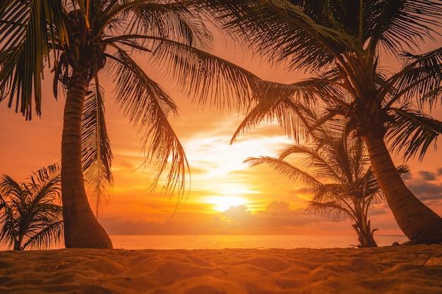 Oszałamiający filmowy zachód słońca nad morzem