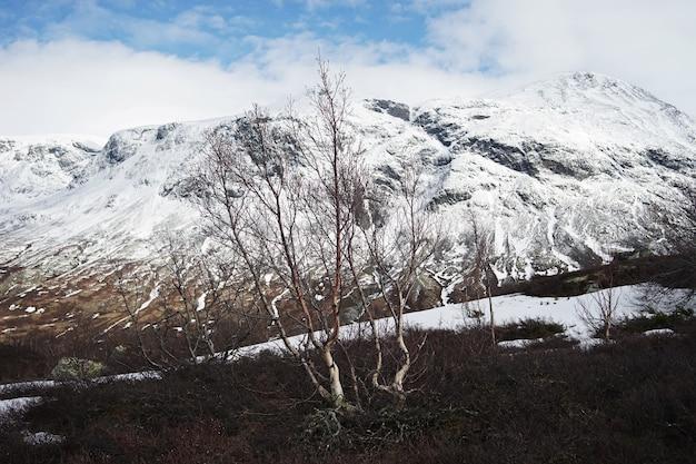 Oszałamiający krajobraz norwegii