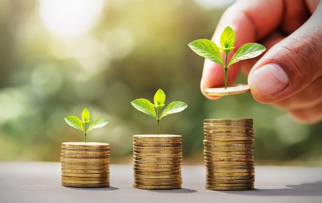 Oszczędność pieniędzy ręcznie umieszczając monety na stosie z małym drzewem rosnącym. koncepcja finansów i rachunkowości