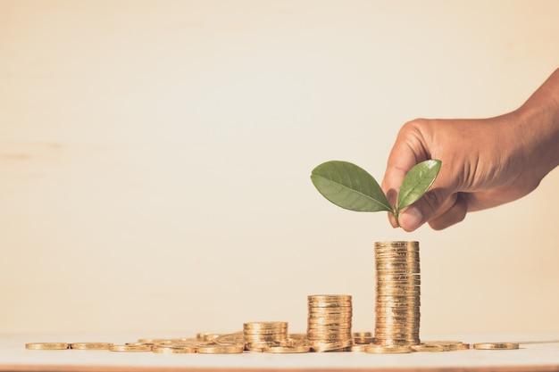 Oszczędzanie, biznes dorasta koncepcja