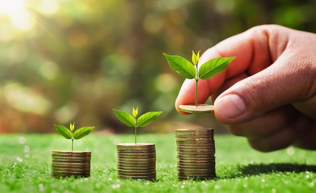Oszczędzanie pieniędzy ręcznie umieszczanie monet na stosie z małym drzewkiem rosnącym