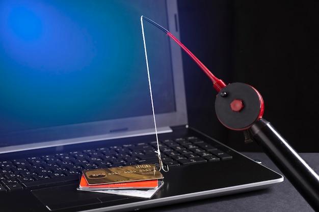 Oszustwa internetowe z wykorzystaniem technologii komputerowej, kradzież pieniędzy w internecie, kradzież danych kart kredytowych. wędka i haczyk.