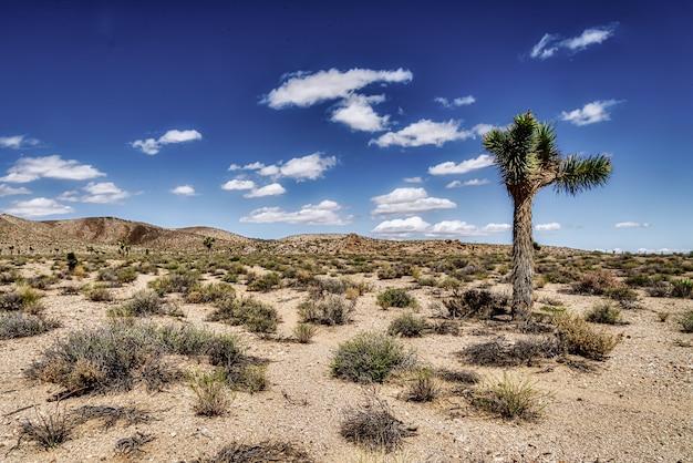 Otwarte pole pustyni z pięknymi wzgórzami i pochmurnym niebieskim niebem