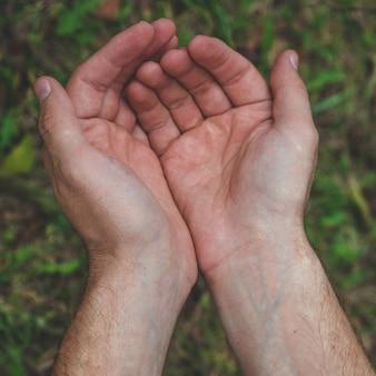 Otwarte ręce. trzymając, dając, pokazując koncepcję. puste ręce na zewnątrz. mężczyzna trzyma coś na dłoni.