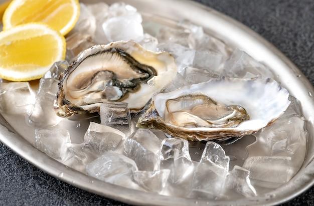 Otwarte surowe ostrygi ze świeżymi kawałkami cytryny na srebrnej tacy do serwowania