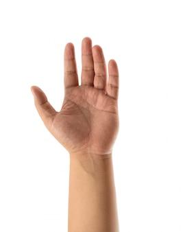 Otwartej dłoni azjatyckiego człowieka na białym tle