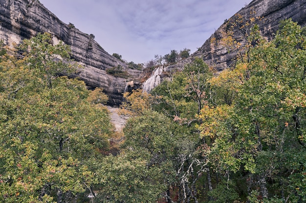 Otwarty widok wodospadu między drzewami i klifami.