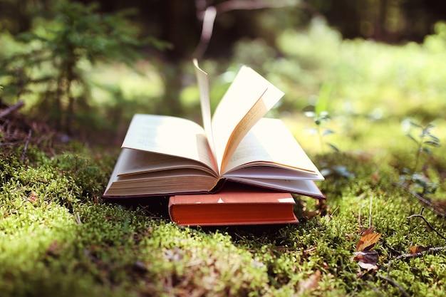 Otwórz książkę na zewnątrz. wiedza to potęga. zarezerwuj w lesie. zarezerwuj na pniu