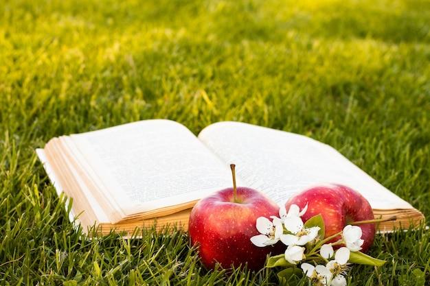 Otwórz książkę na zielonej trawie ze świeżymi czerwonymi jabłkami i kwiatem gruszki.