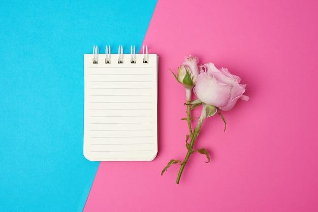 Otwórz notatnik z białymi kartkami i różową różą na niebieskim różowym tle